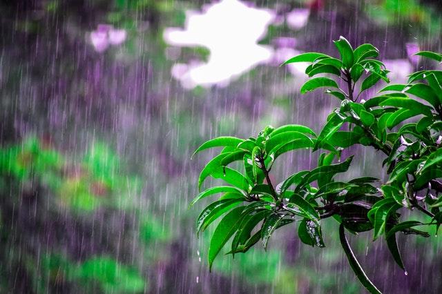 落ち込んでいる雨の様子