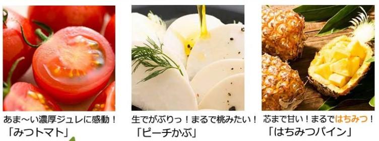 オイシックスの野菜の写真