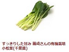 すっきりした甘み 篠崎さんの有機栽培小松菜(千葉県)